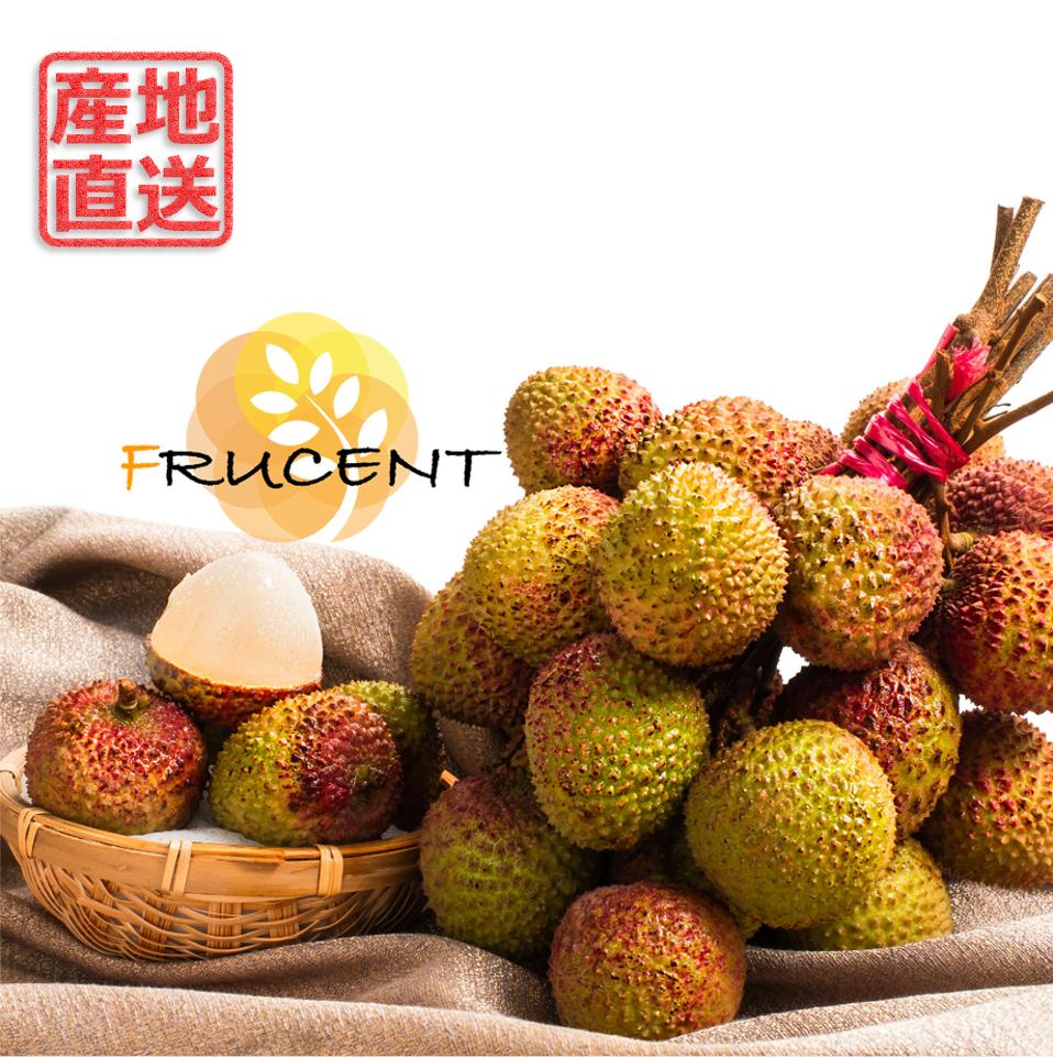 台灣玉荷包荔枝|玉荷包ライチ|台湾ライチ|LYCHEE|3㎏|予約販売中